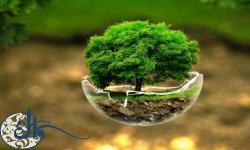گزارش مقاله| بررسی محتوای اصل مشارکت در حقوق بین الملل محیط زیست