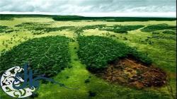 معرفی مقاله| بررسی جنبههای مختلف امنیت زیست محیطی با رویکرد مکتب انتقادی