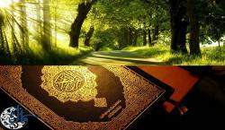 گزارش مقاله| تبیین جایگاه والای محیط زیست در فرهنگ اسلامی